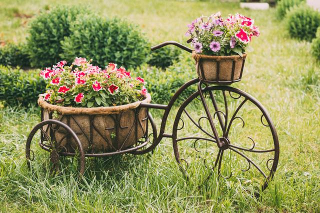love-gardens-thien-duong-bao-son-azbooking.vn